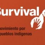 survival cuadrado
