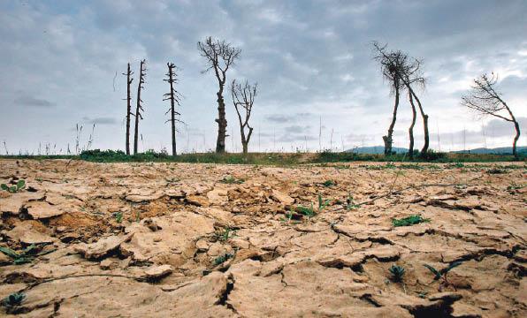 erosion cambio climatico