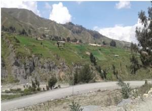 Cultivos en falda de montaña, Chicani