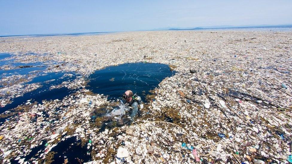 042ac1f09 Innovadora propuesta: control de los residuos plásticos mediante el ...