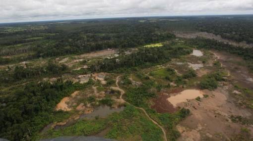 deforestacion peru